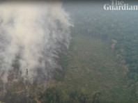 Правительство Бразилии отказалось от денежной помощи G7 при тушении пожаров в Амазонии