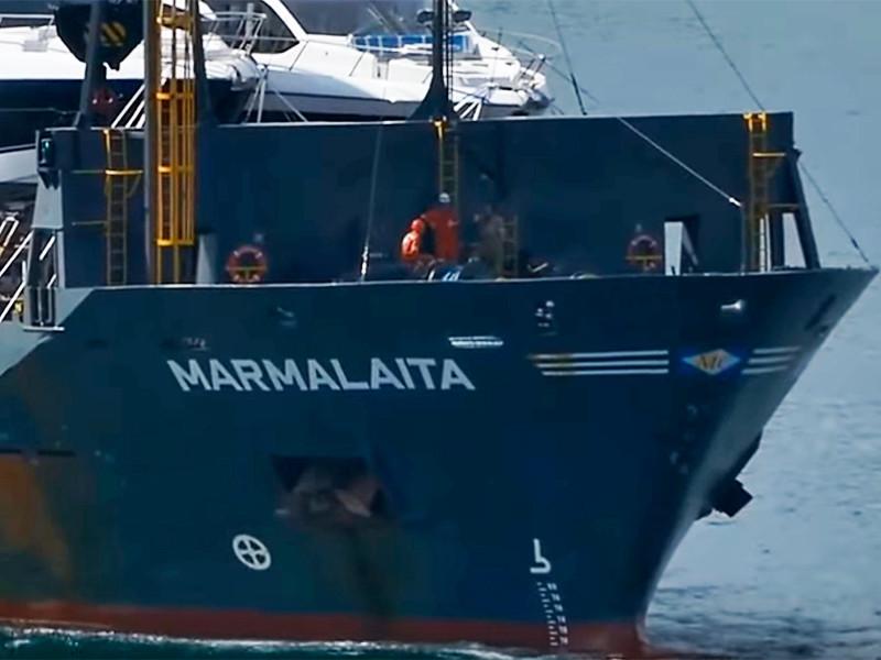 """СМИ сообщили о выходе на связь пиратов, похитивших россиян с судна у берегов Камеруна"""" />"""