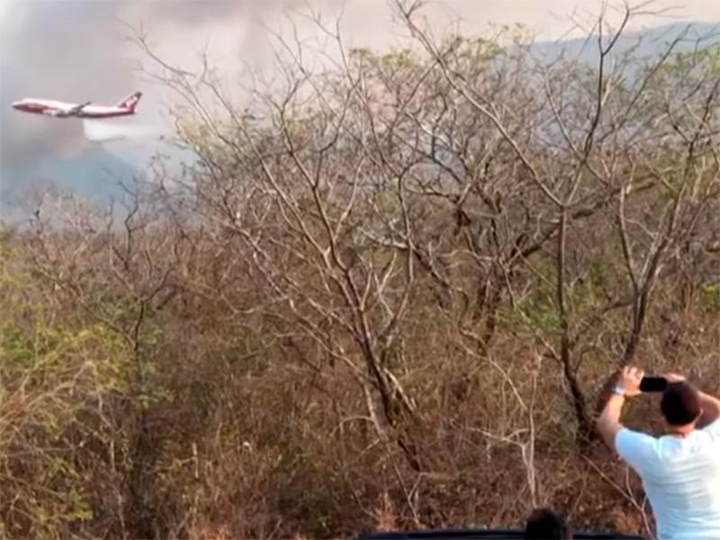 В регионе Чикитания, который охватывает несколько провинций с тропическими саваннами в боливийском департаменте Санта-Крус, огонь уничтожил 1,2 млн га растительности - деревьев, травы, кустарников