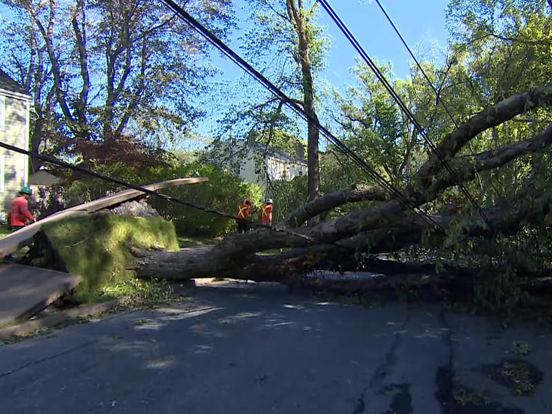 """На востоке Канады после прохождения урагана """"Дориан"""" нет электричества и не работают школы"""