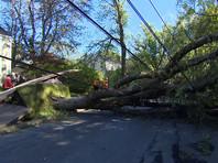 """Более 200 тысяч потребителей по-прежнему остаются без электричества после прохождения урагана """"Дориан"""" в районе канадских атлантических провинций Нью-Брансуик, Новая Шотландия и Остров принца Эдуарда"""