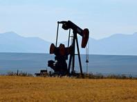После атак на НПЗ в Саудовской Аравии США готовы при необходимости задействовать свои нефтяные резервы