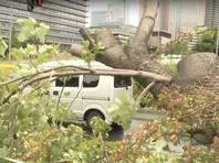 """Тайфуны """"Факсай"""" и """"Линлин"""" привели к жертвам на Дальнем Востоке"""