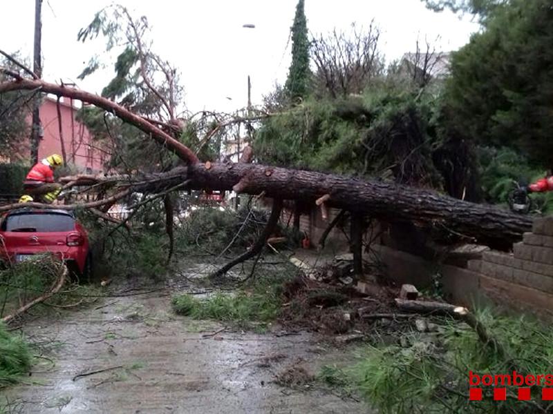 """Шторм """"Глория"""" обрушил на Испанию огромные волны, проливные дожди и снегопады (ФОТО, ВИДЕО)"""" />"""