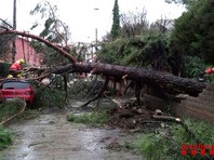 Высота волн достигала 7 метров, а ветер порывами до 144 км/ч валил деревья и рушил конструкции