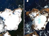 NASA обнародовало спутниковые снимки острова Игл в Антарктике, на которых видно беспрецедентное таяние ледяной шапки. Фотографии эти были сделаны 4 и 13 февраля спутником дистанционного зондирования Земли Landsat 8
