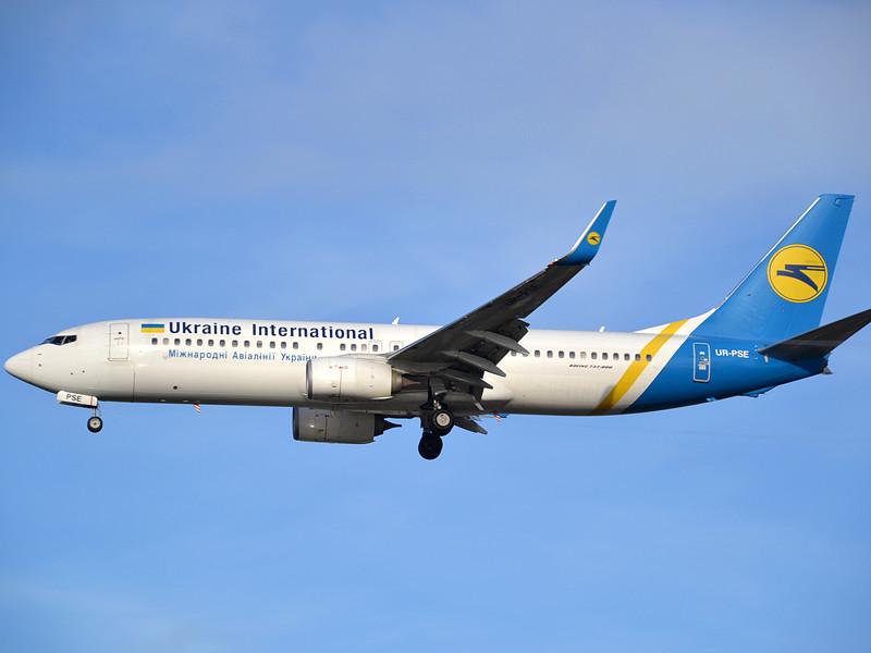 """Украинская авиакомпания МАУ разрешила брать в салон толстых котов"""" />"""