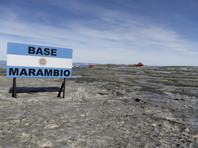 В Антарктике фиксируют новый рекорд: температура впервые перевалила за +20°С