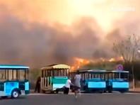 Лесной пожар в городе Сичан