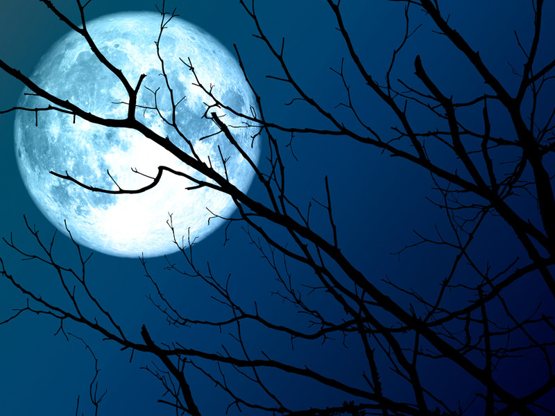 Предстоящей ночью можно будет наблюдать самую большую Луну 2020 года