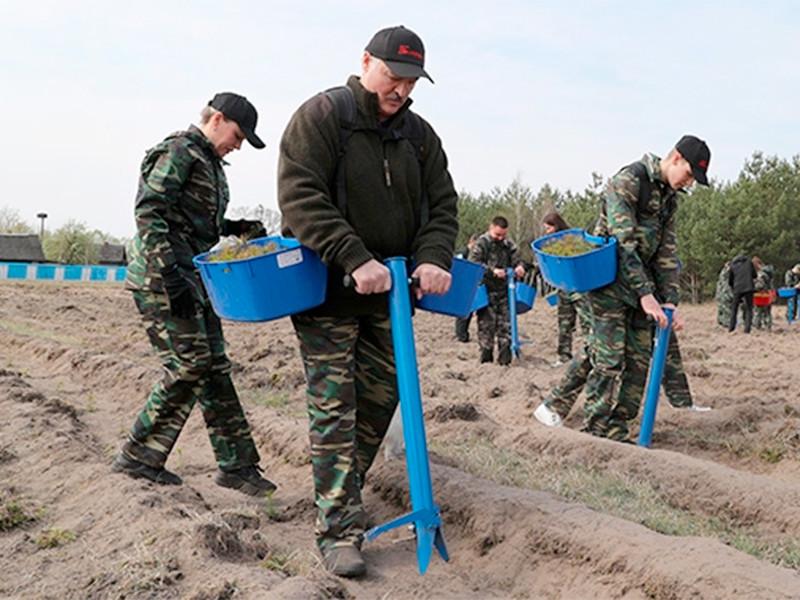 В Белоруссии вопреки рекомендации Всемирной организации здравоохранения (ВОЗ) отменить все массовые мероприятия 25 апреля проходит общереспубликанский субботник