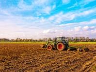 ООН и ВТО предупредили об опасности продовольственного кризиса в мире