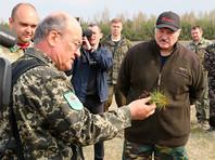 В субботнике участвуют лично президент Александр Лукашенко, сотрудники госорганов, представители местных властей и простые граждане