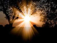 Сразу после брифинга медики стали разъяснять, что дезинфицирующие средства никоим образом нельзя использовать для очистки организма, а солнечный свет не является средством лечения коронавируса