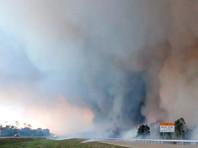 В юго-западной части Флориды в условиях очень низкой влажности воздуха и сильного ветра крупный лесной пожар бушует в округе Коллиер. 15 мая площадь возгорания, по данным лесной службы штата, составляла почти 3,5 тысячи гектаров, и оно локализовано лишь на 10% процентов