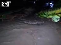В прибрежных районах разрушены тысячи домов, произошли наводнения. Из-за поваленных деревьев возникли серьезные проблемы с электроснабжением, автомобильным и железнодорожным сообщением