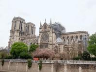В Париже открыли для публики Соборную площадь перед Нотр-Дам