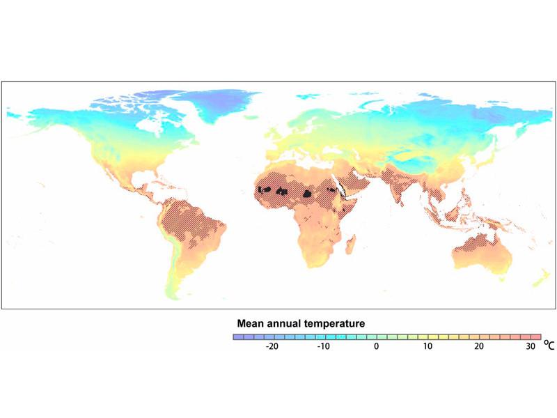"""К 2070 году 3,5 млрд человек будут жить в непригодных климатических условиях, как в пустыне Сахара"""" />"""