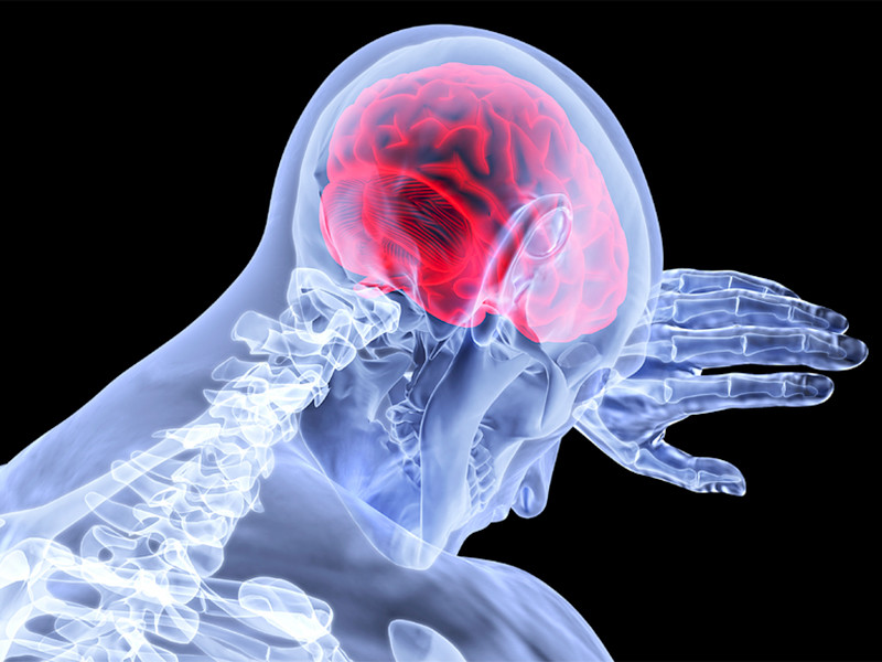 Нейробиологи из Университета Людвига Максимилиана в Мюнхене (Германия) определили количество кислорода, необходимое клеткам головного мозга для обеспечения эффективного функционирования его многочисленных структур и клеток
