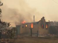 Природный пожар на востоке Украины уничтожил более 100 домов, есть жертвы (ВИДЕО)