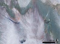 """В целом выводы экологов и климатологов неутешительны. Ледник Презена тает уже не первый год, и интенсивный рост водорослей может стать """"последним гвоздем в гроб"""", отмечает издание Naked Science"""