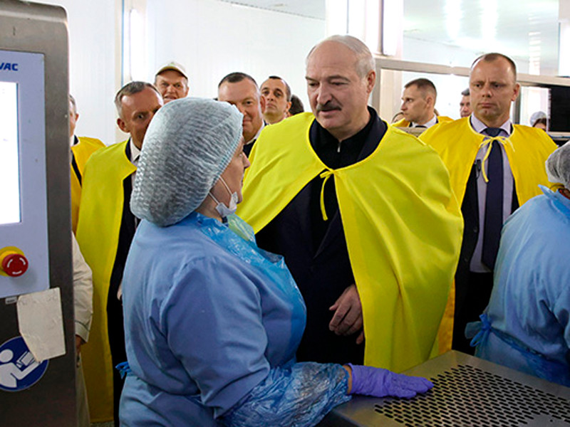 "Александр Лукашенко на агрокомбинате ""Дзержинский"""