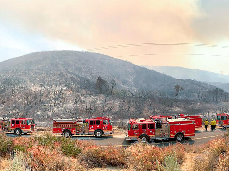 Трамп распорядился оказать федеральную помощь властям Калифорнии из-за охвативших штат лесных пожаров