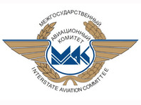 Межгосударственный авиационный комитет в 2011 году обнародовал окончательный отчет о результатах технического расследования, согласно которому непосредственной причиной крушения признано решение экипажа не уходить на запасной аэродром