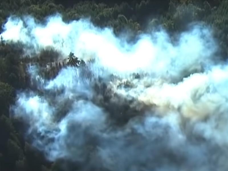 В западной половине США из-за жары, длительной засухи и сильного ветра бушуют лесные пожары в штатах Орегон, Калифорния, Вашингтон и Колорадо