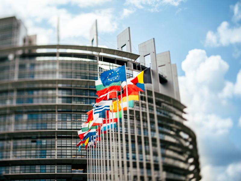 Европарламент принял резолюцию по Навальному, призвав ЕС заморозить европейские активы лиц из расследований ФБК