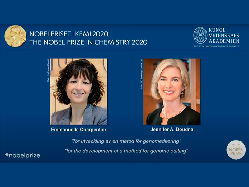 Нобелевскими лауреатами по химии 2020 года стали Дженнифер Дудна и Эммануэль Шарпантье