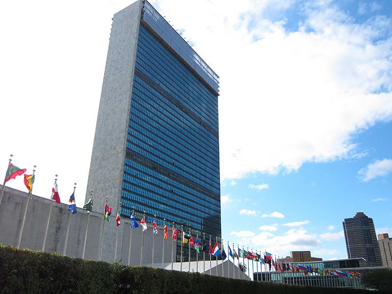 Пять стран обратились к России через Совбез ООН по поводу инцидента с Навальным