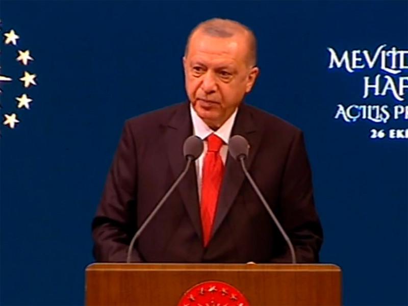 Эрдоган призвал граждан Турции бойкотировать французские товары
