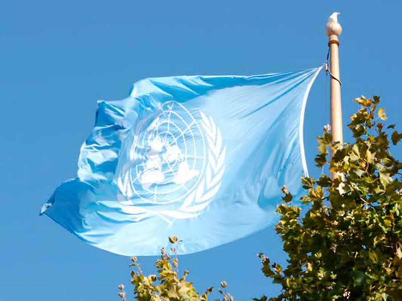 """ООН проголосовала за исключение каннабиса из списка особо опасных наркотиков"""" />"""
