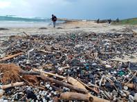 В Израиле выясняют причины экологической катастрофы на побережье Средиземного моря. 18 февраля на там были обнаружены десятки мертвых морских животных и черные масляные пятна