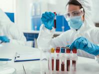 """Малое исследование показало, что """"британский"""" штамм не вызывает более тяжелого течения болезни, а смертность в обоих вариантах вируса оставалась на одном уровне (16% у """"британского, 17% у """"уханьского"""")"""