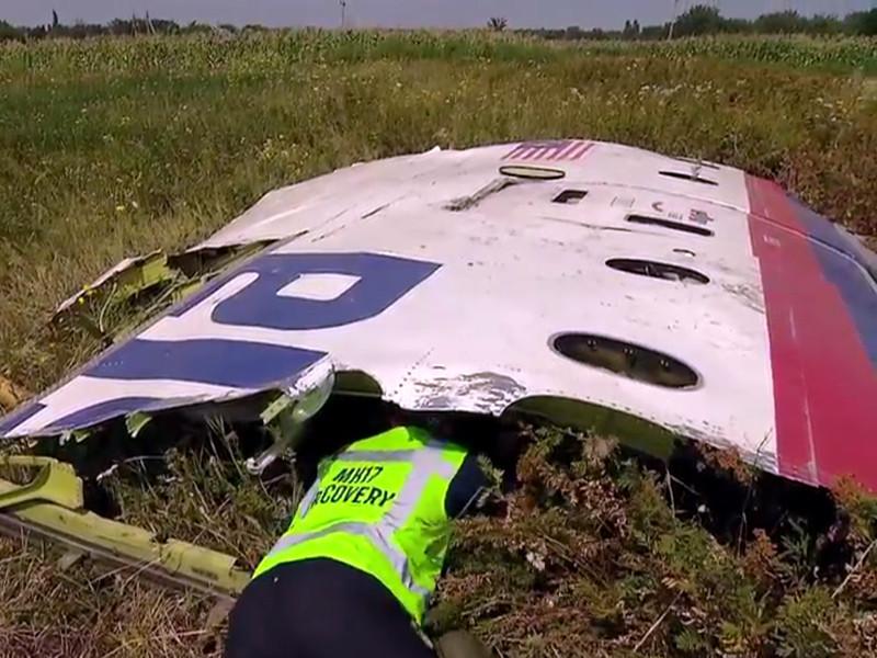 Самолет авиакомпании Malaysia Airlines, совершавший регулярный рейс по маршруту Амстердам - Куала-Лумпур, был сбит 17 июля 2014 года в небе над Донбассом. Все находившиеся на его борту 298 человек погибли