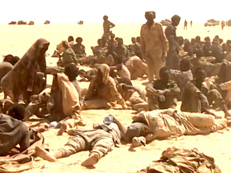 Минобороны Чада: вторгшиеся в страну из Ливии повстанцы разбиты