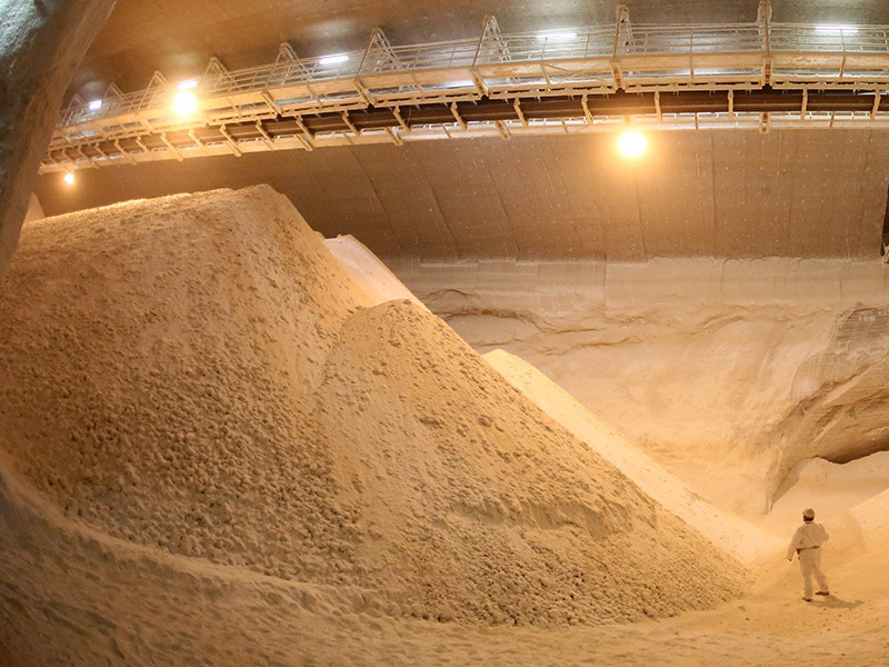 Сын Генерального прокурора России Юрия Чайки - Артем Чайка - с конца июля является владельцем крупнейшего поставщика пищевой соли в Сибирском и Дальневосточном федеральных округах