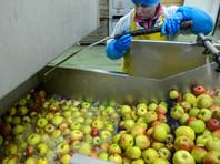В 2015 году импорт яблок и грибов в Россию из Белоруссии в 5 раз превысил собранный там урожай