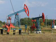 В Кремле, комментируя недавнюю беседу Путина с президентом Ирана, обошли тему сокращения добычи нефти