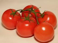 Минсельхоз предлагает отсрочить возобновление  ввоза в Россию турецких томатов на два-три года