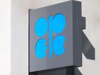 РФ может продлить соглашение с ОПЕК по сокращению добычи нефти из-за риска снижения цен