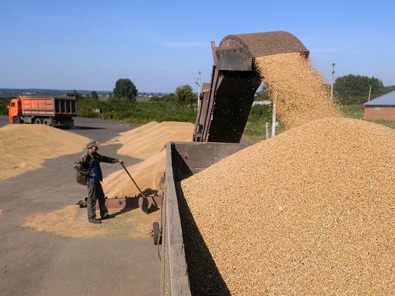 В Турции, напоминает газета, действует режим защиты внутреннего рынка: для поставки зерна без пошлины для переработки и дальнейшего экспорта необходима лицензия. Турция с середины марта не выдает такие лицензии на поставку российской сельхозпродукции