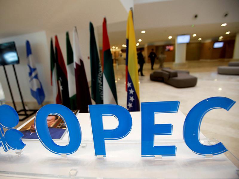 ОПЕК в целом не стала менять прогноз мирового спроса на нефть
