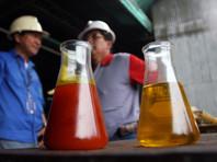 В этом году Россия начала снижать импорт пальмового масла
