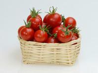 Россия и Турция снова обсудят вопрос об отмене ограничений на поставки турецких томатов в РФ на выставке в Измире 18 августа