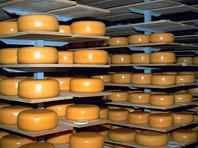 Россияне сократили потребление сыра из-за низкого качества отечественной продукции