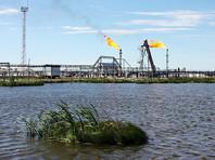 Нефти России хватит на 29 лет, снова напомнил министр природы