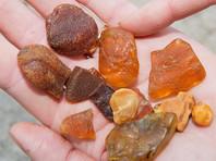 В Белоруссии решили добывать янтарь, промышленно значимых месторождений которого нет